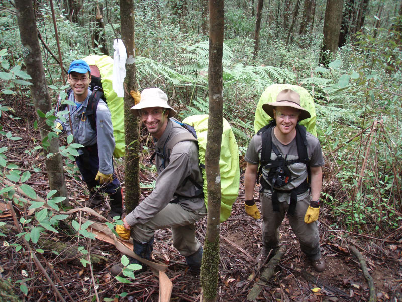 Bush Search and Rescue in the field on the flanks of Mt Dom Dom