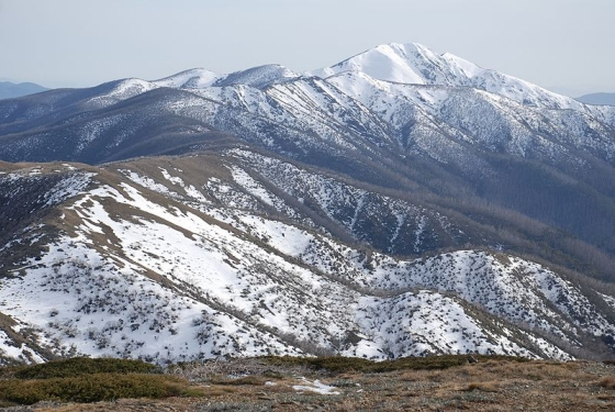 Mount Feathertop and the Razorback Spur. Photo: Peter Campbell