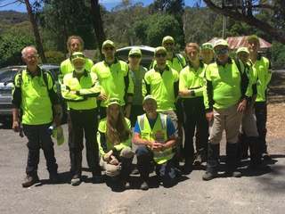 BSAR search team at Halls Gap