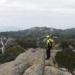 Mount Buffalo search