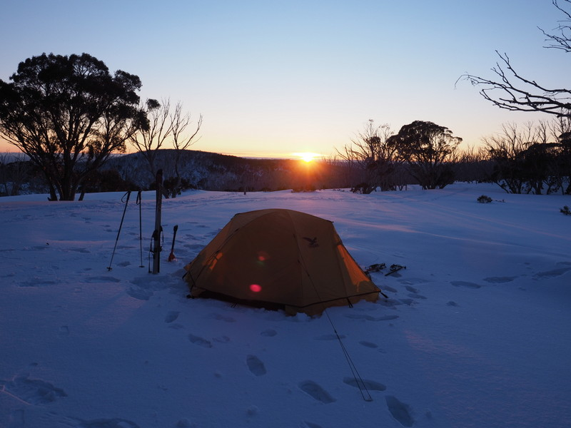 2017 Bogong search - camping near Cleve Cole hut 02